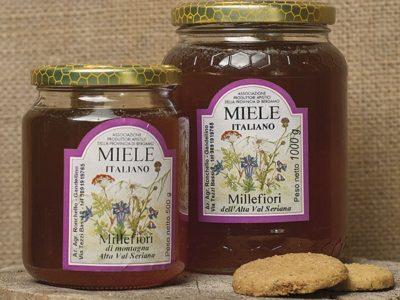 Miele millefiori di montagna