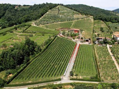 Azienda Agricola La Brugherata