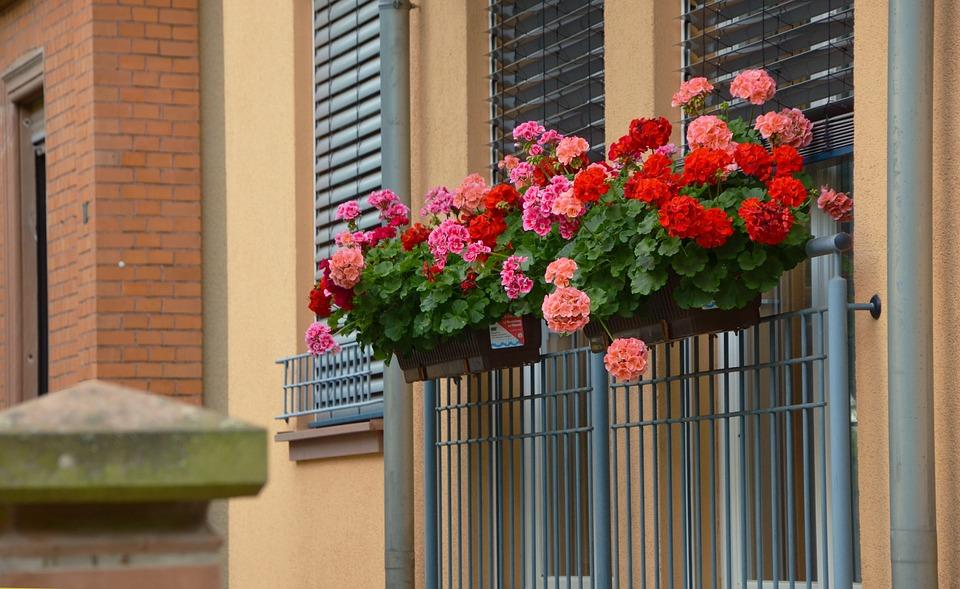 concorso_balconi_fioriti