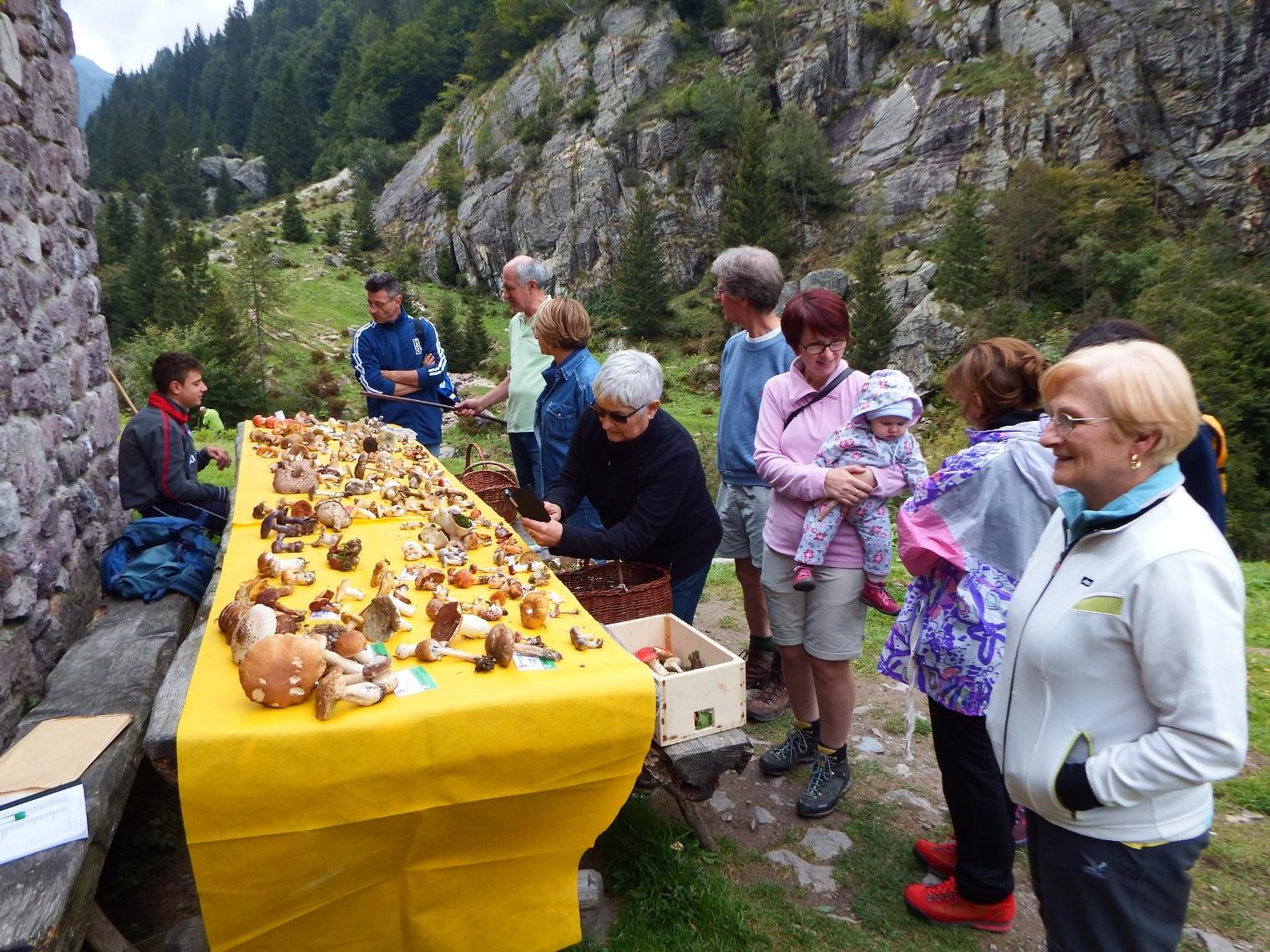 2016_09_10_Valgoglio_Mostra al Rif. Gianpace