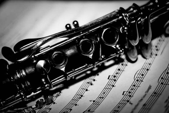 http://www.valseriana.eu/wp-content/uploads/2016/12/clarinetto.jpg