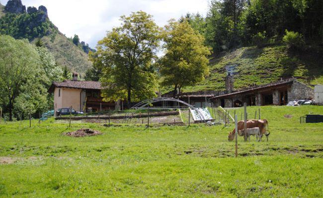 La fattoria bianca sito ufficiale valseriana e val di scalve for Piani di fattoria bianca