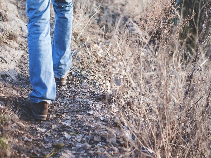 Camminata Delle Associazioni