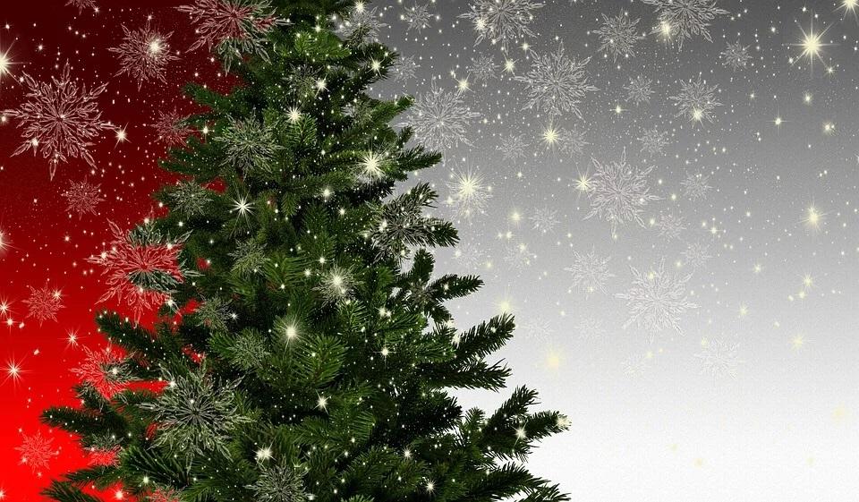 Albero Di Natale Yahoo.Accensione Albero Di Natale Sito Ufficiale Valseriana E Val Di Scalve