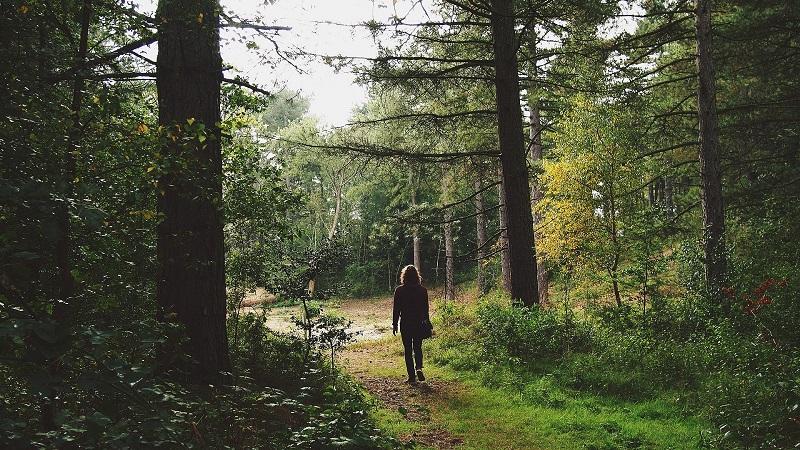 passeggiate-accompagnate-3